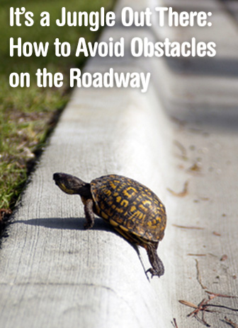 It's a Jungle Out There: How to Avoid Obstacles on the Roadway