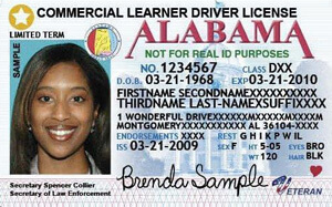 AL commercial driver's license