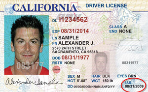 CA commercial driver's license