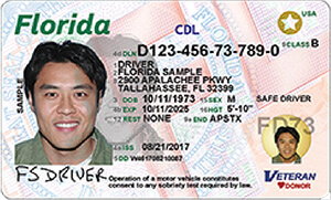 FL commercial driver's license