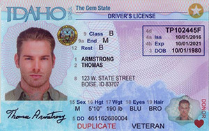 driver's license in Idaho