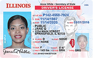 driver's license in Illinois