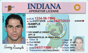 IN commercial driver's license