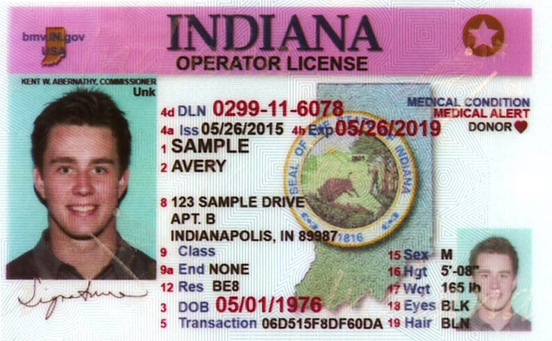 driver's license in Indiana