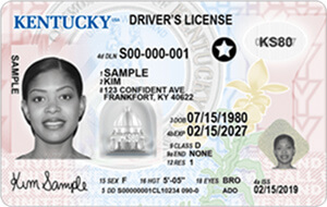 kentucky commercial driver license self-certification