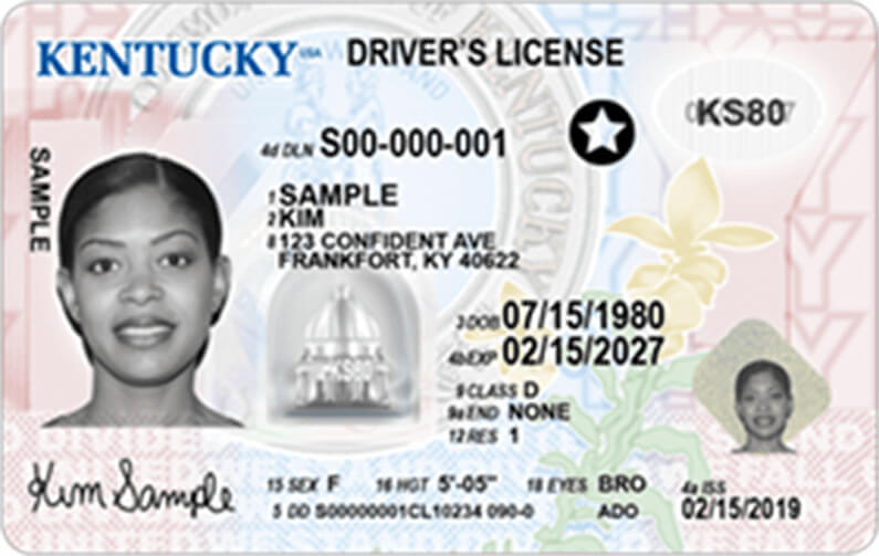 drivers license bureau fort collins colorado