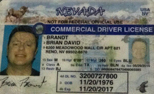 NV commercial driver's license