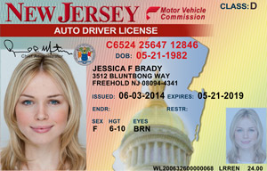 driver's license in New Jersey