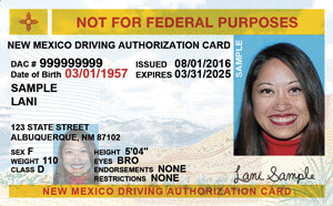 NM commercial driver's license