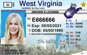 WV DMV driver's license