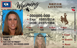 WY DOT driver's license