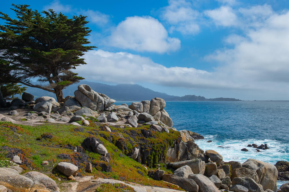 Rocky Coastline Along The 17 Mile Drive In Pebble Beach And Pacific Grove California