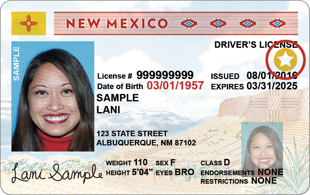 driver's license in New Mexico